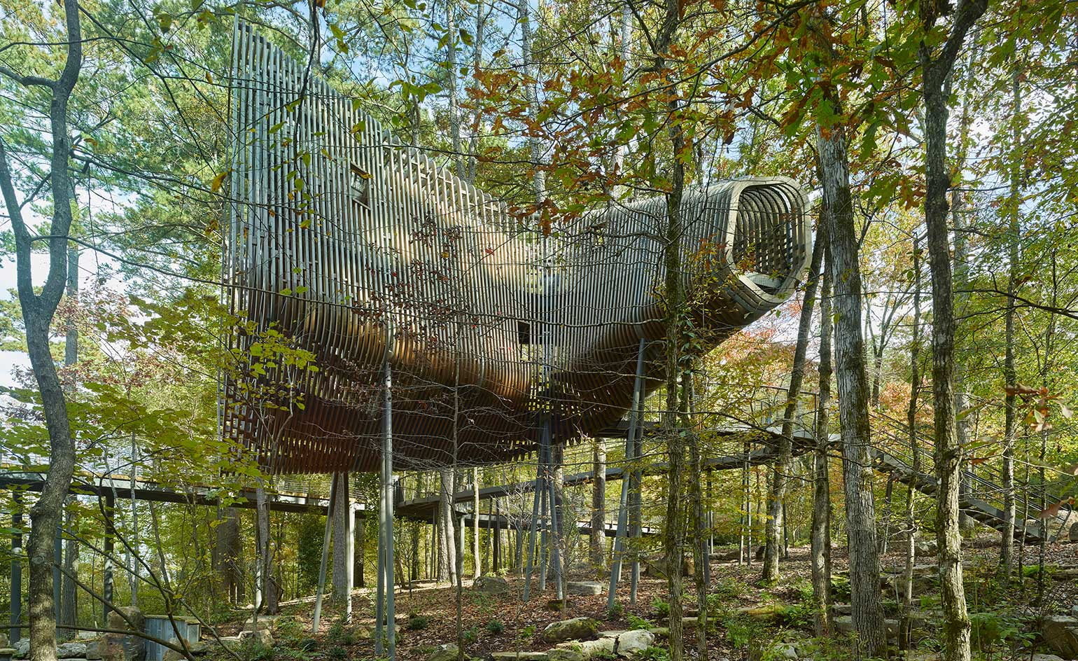 Tree houses: rural retreats reaching new architectural