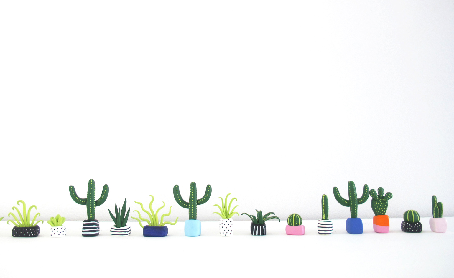 Designer Boe Holder S Mini Plants Cacti And Succulents