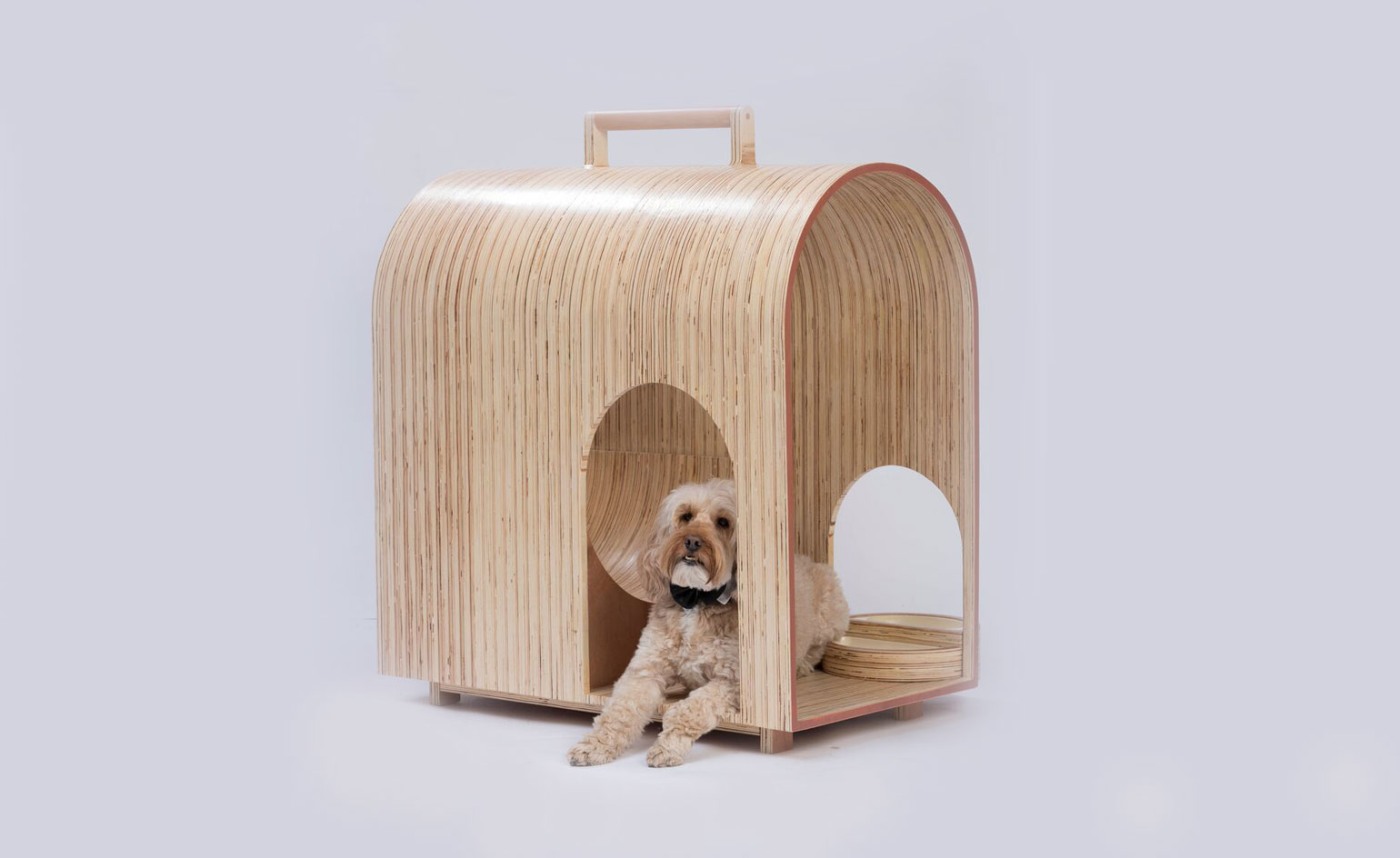 Zaha Hadid's designer dog kennel joins a pack of pooch ... - photo#7