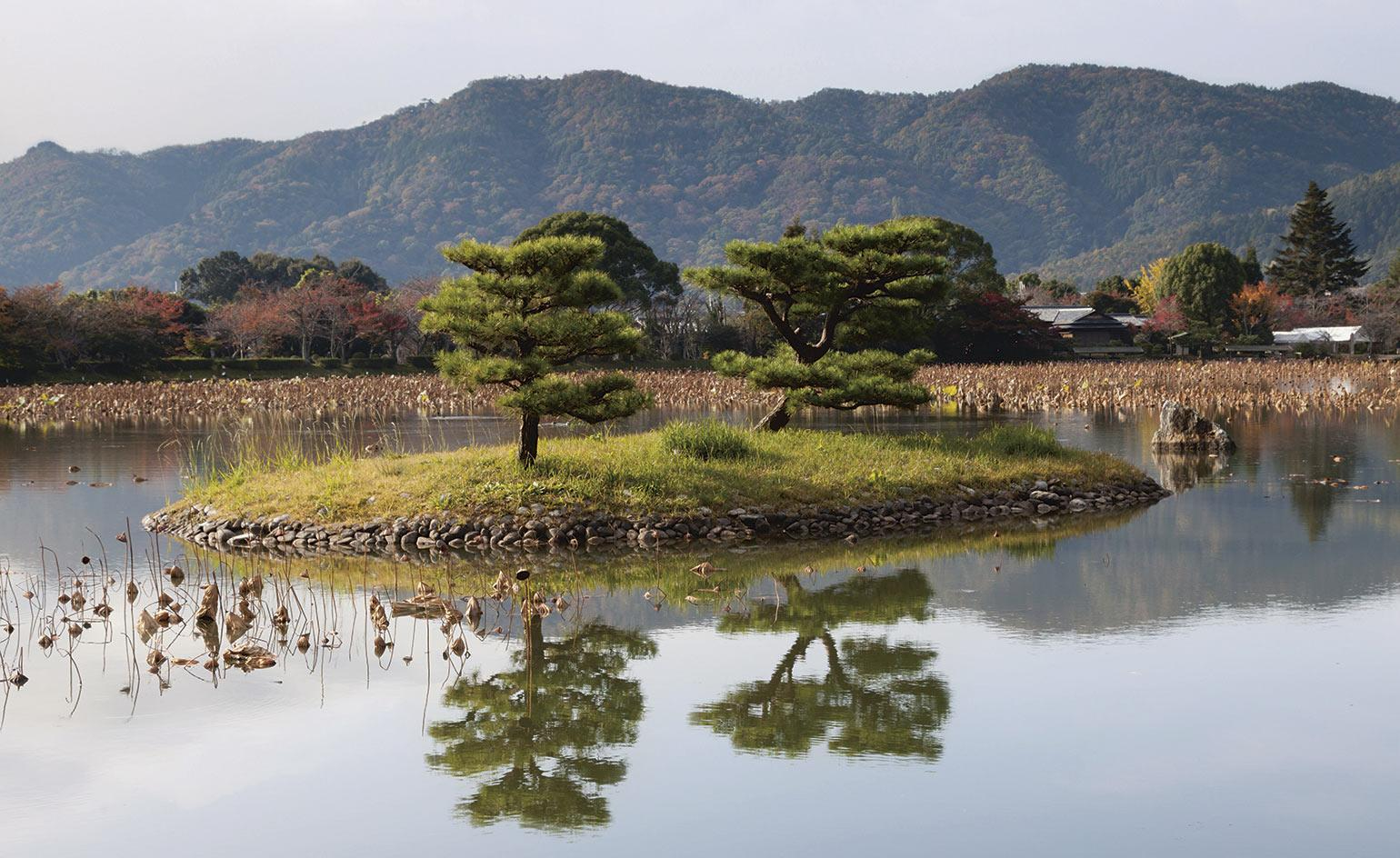 A new book unlocks the enigma of the Japanese garden