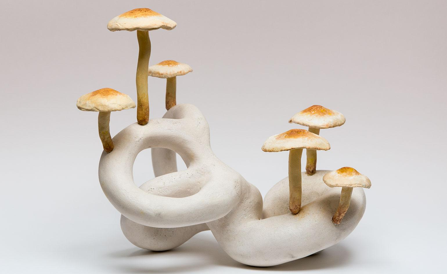 Unpacking the magic of mushrooms and future of fungi