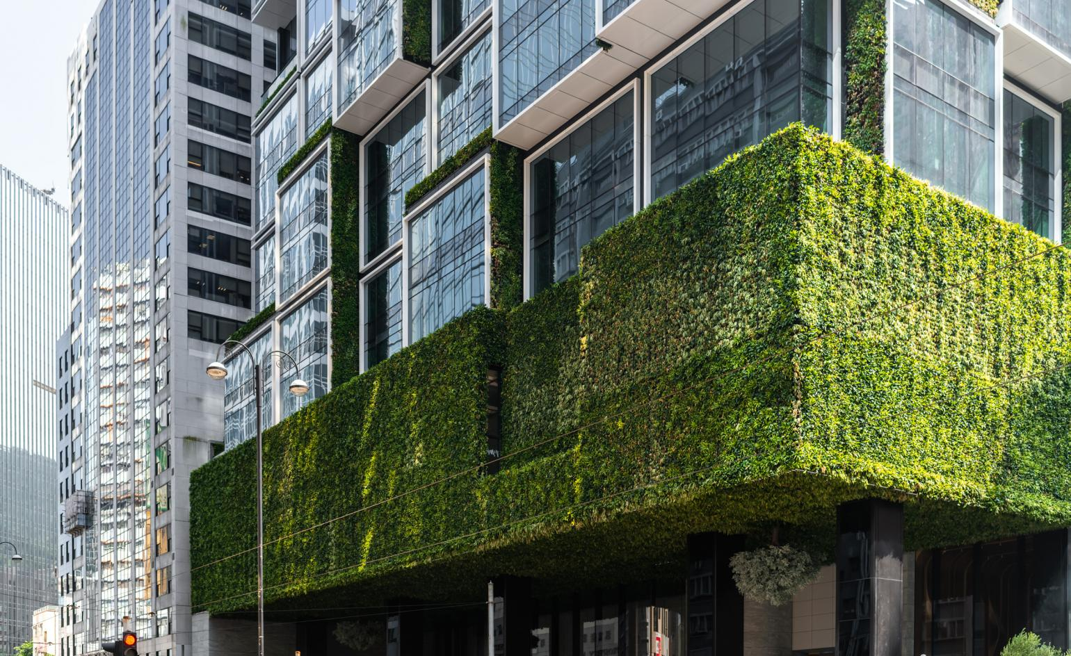 Rooftop farming, earth walls, and art: is this Hong Kong's most innovative office?