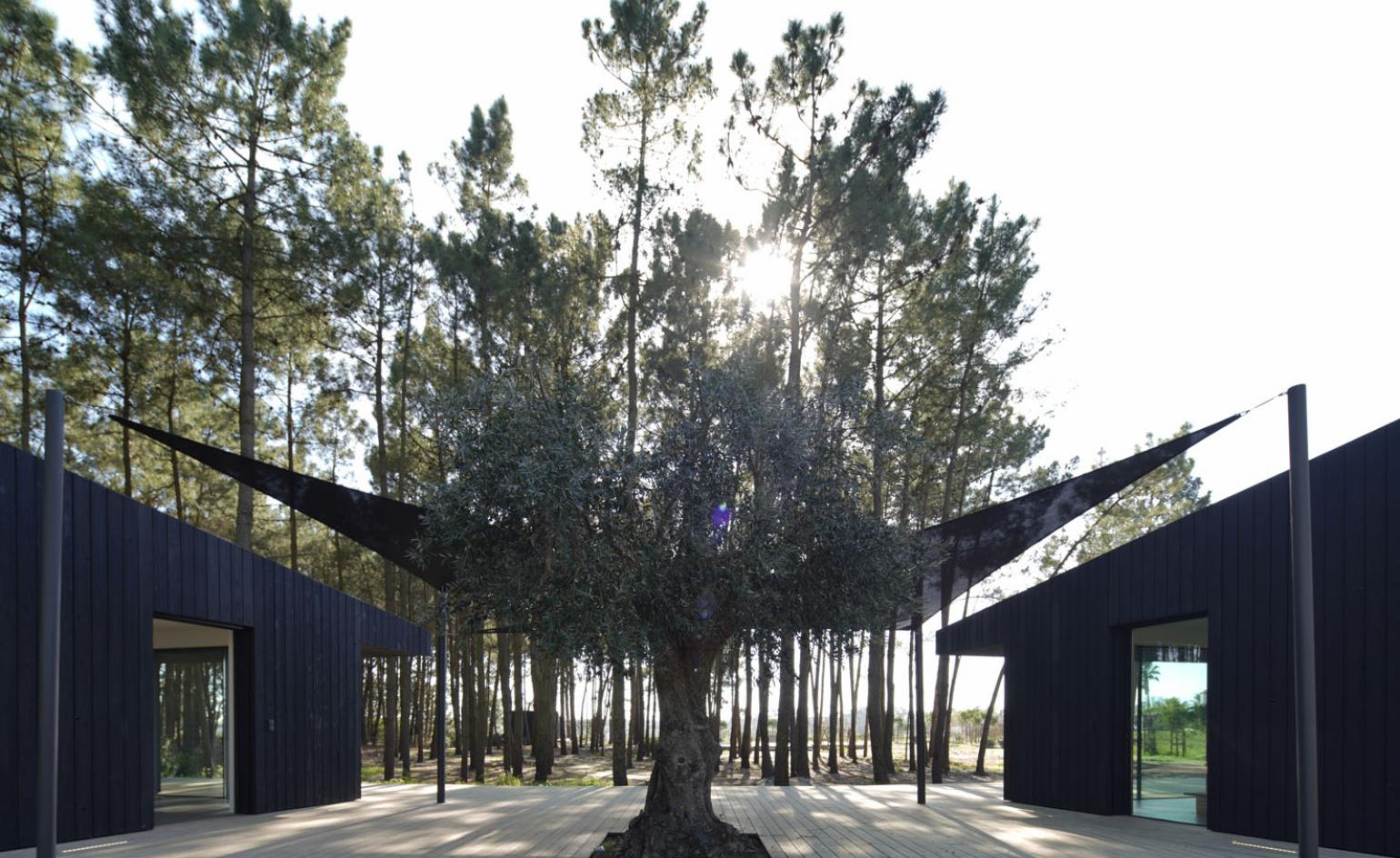 Comporta cabins: sustainable breaks for escape artists