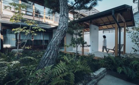 Suzu by Bonbonma is a four apartment building renovation engulfed in greenery