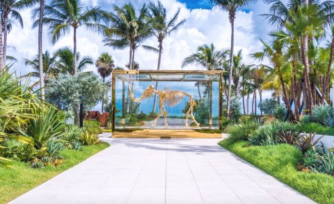 Miami nice: take a whistle-stop 360-degree tour of Miami's Faena District
