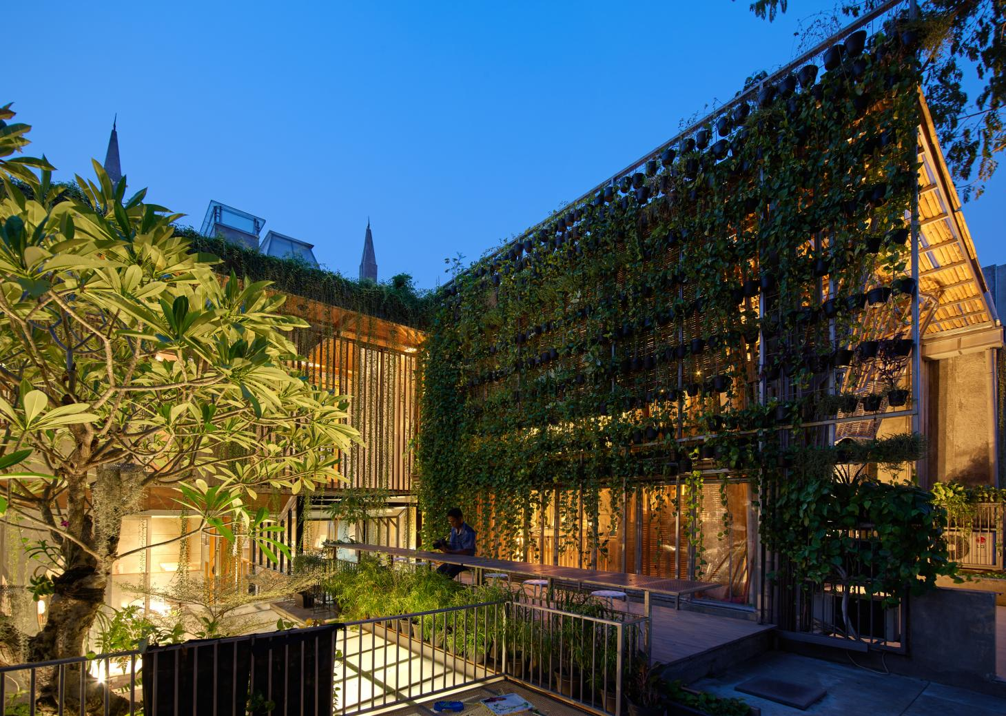 courtyard elevation and green wall at RAW architecture's live/work space