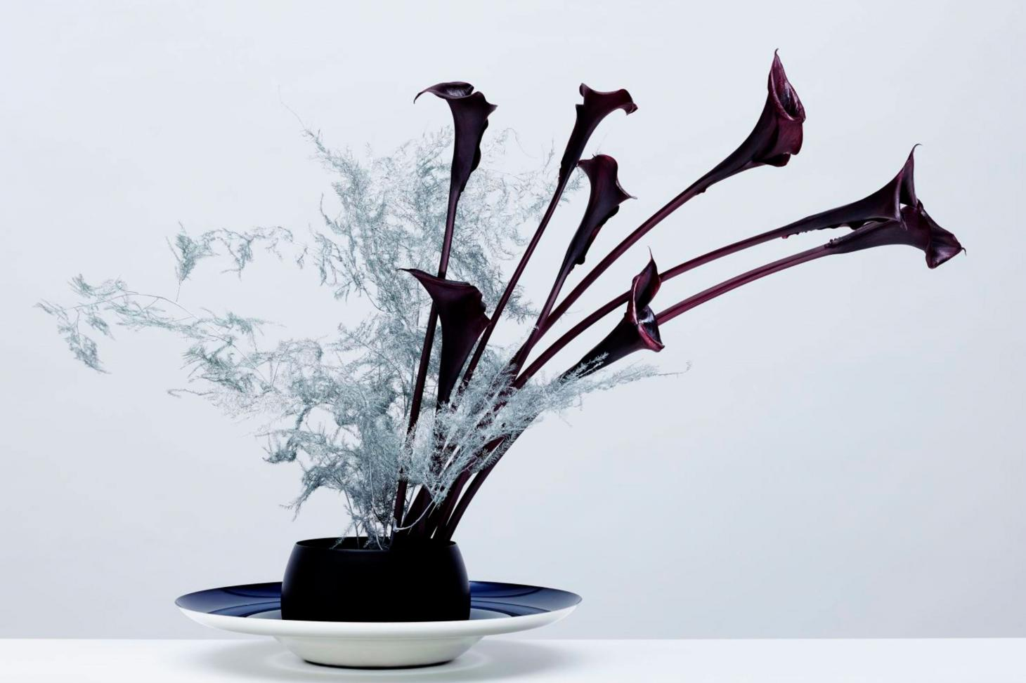dark purple and white flowers in black bowl against white background made by Meta Flora in New York
