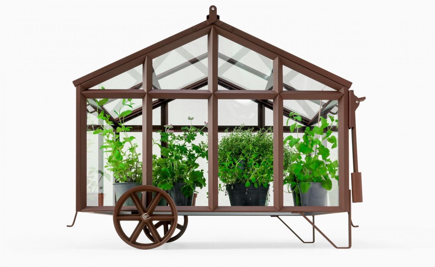 cast iron greenhouse with plants in it