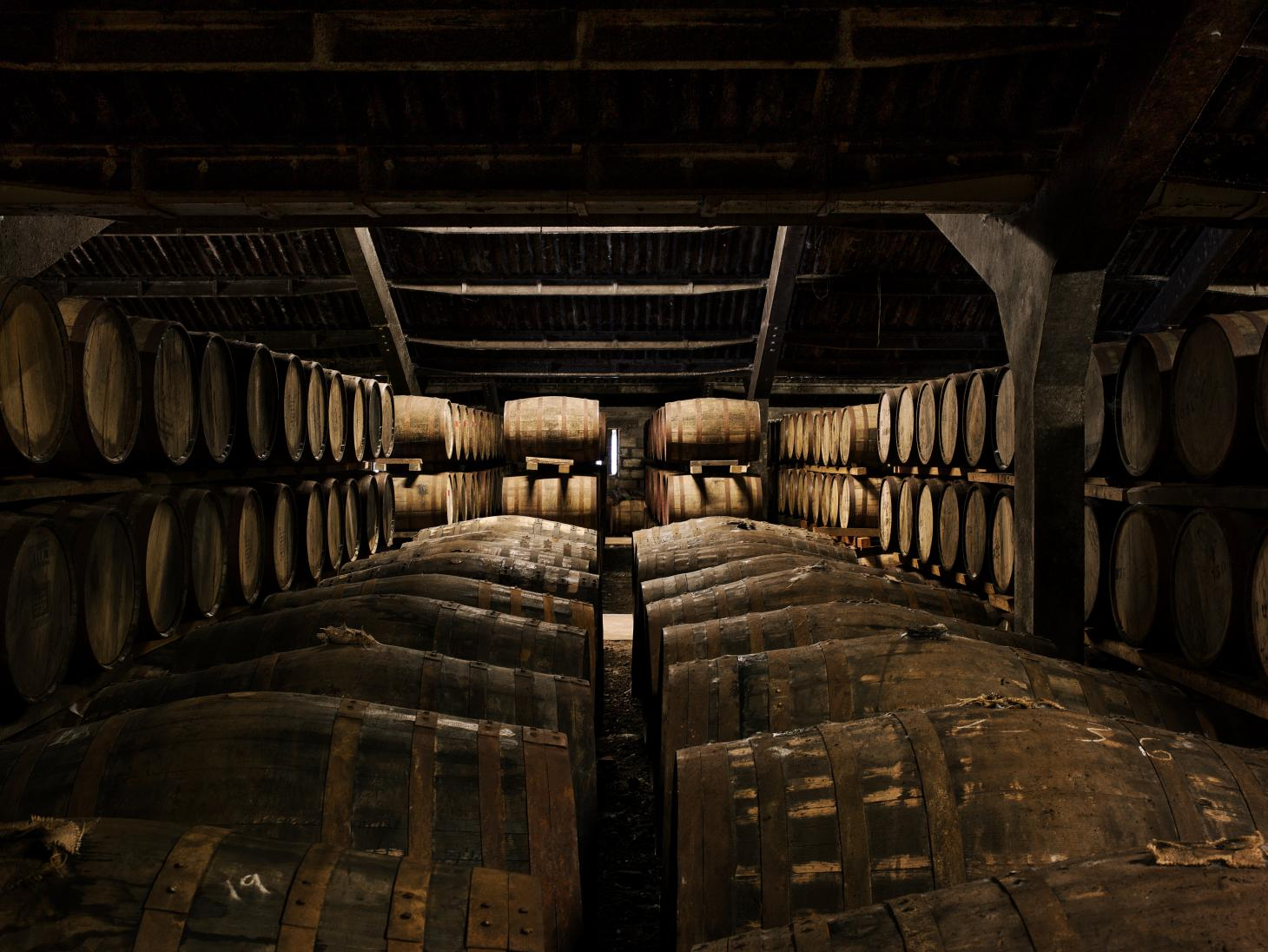 Dalmore whiskey ageing in wooden barrels