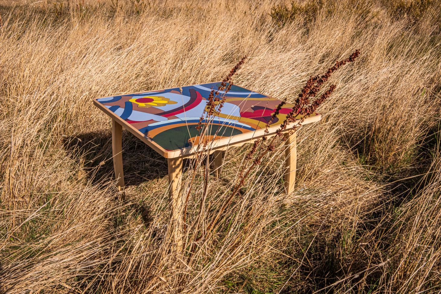 Wooden table with colourful top photographed in a meadow