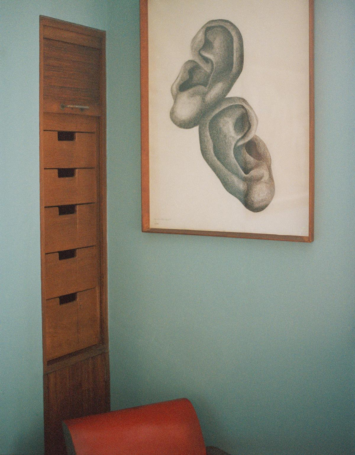 Ears, by Ursula Goldfinger, 1938, Willow Road Studio Frith exhibition