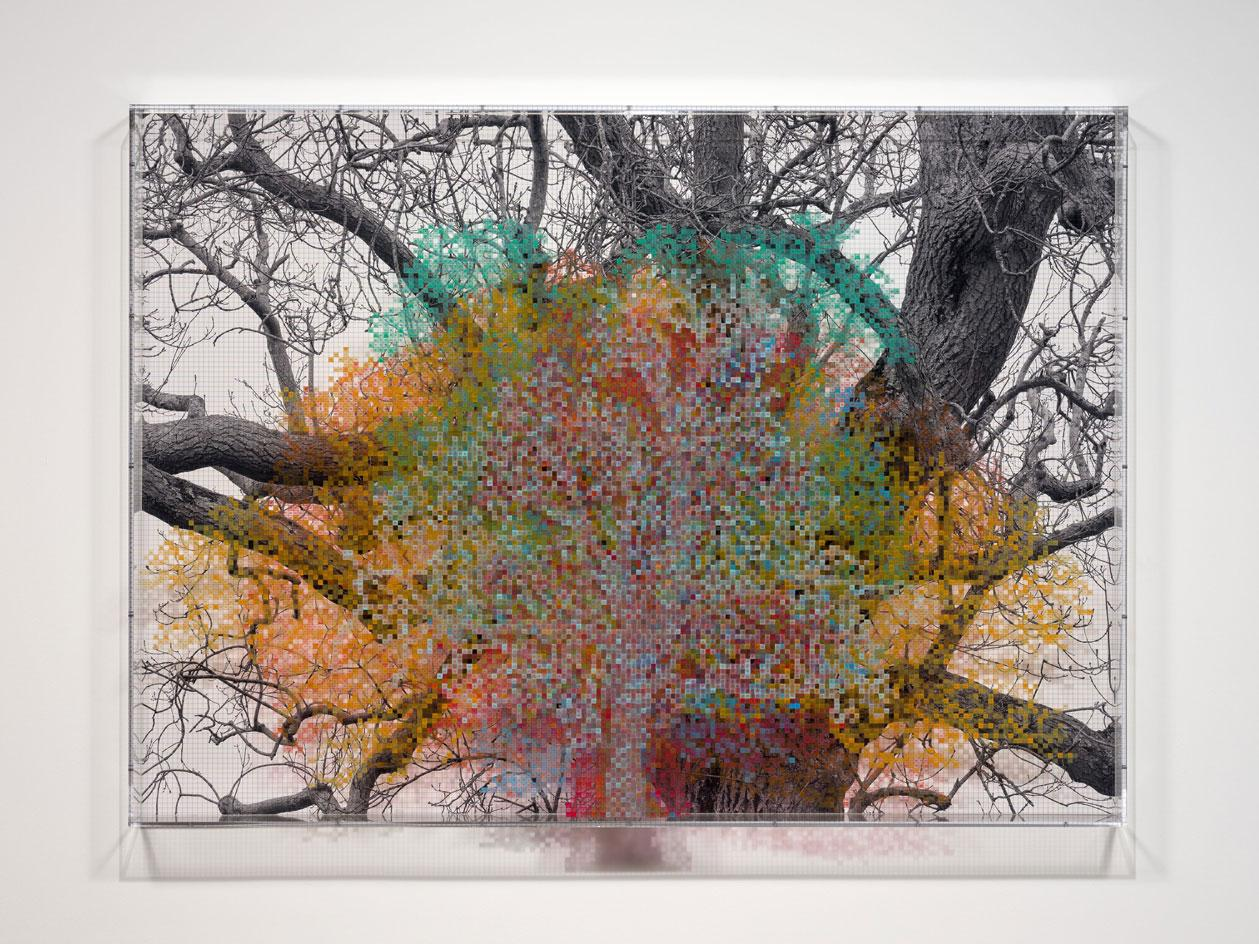 London, Series 1, Tree #6, Fetter Lane, 2020 at Hauser & Wirth London