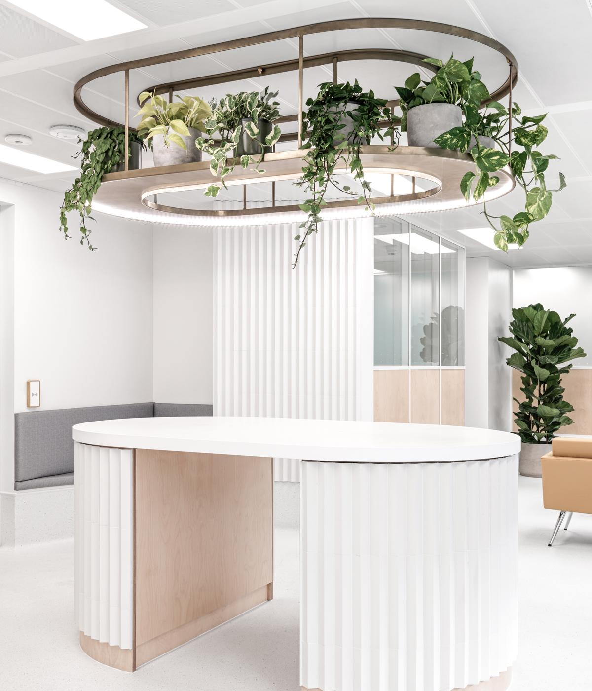 white reception desk with plants on it