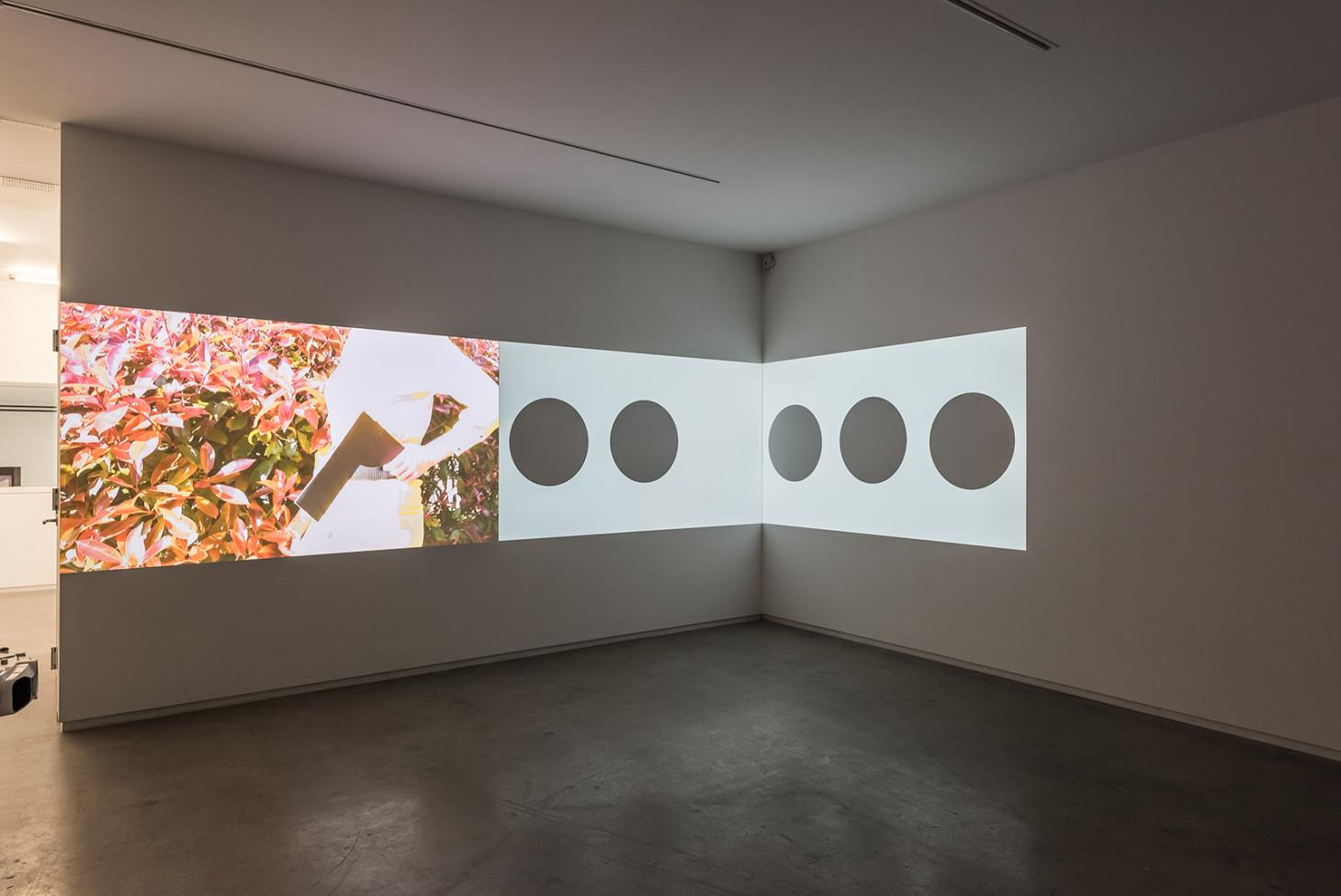Installation view of 'Hilary Lloyd' at Blaffer Art Museum, Texas, 2016