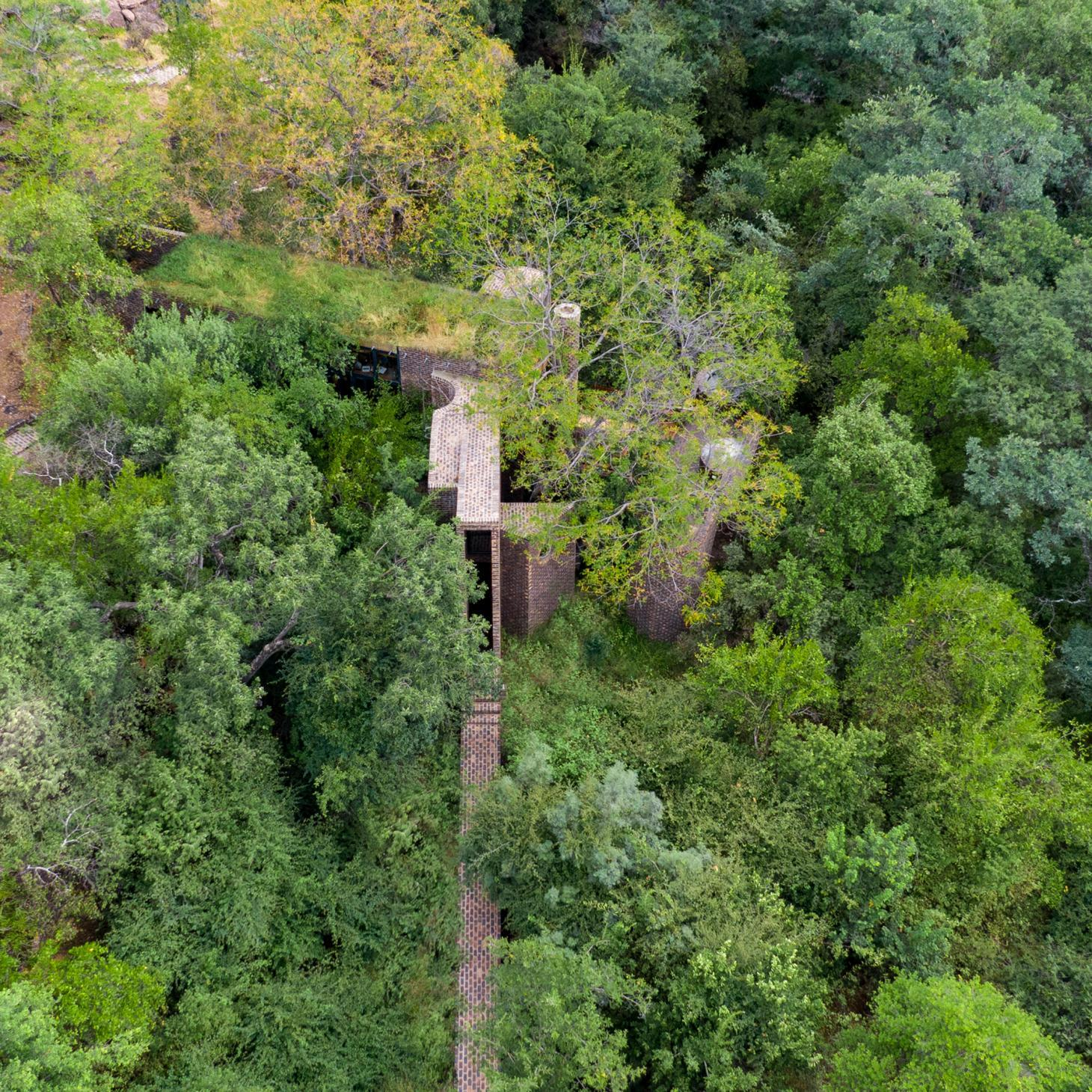 this brick house in South Africa is hidden within a thick forest