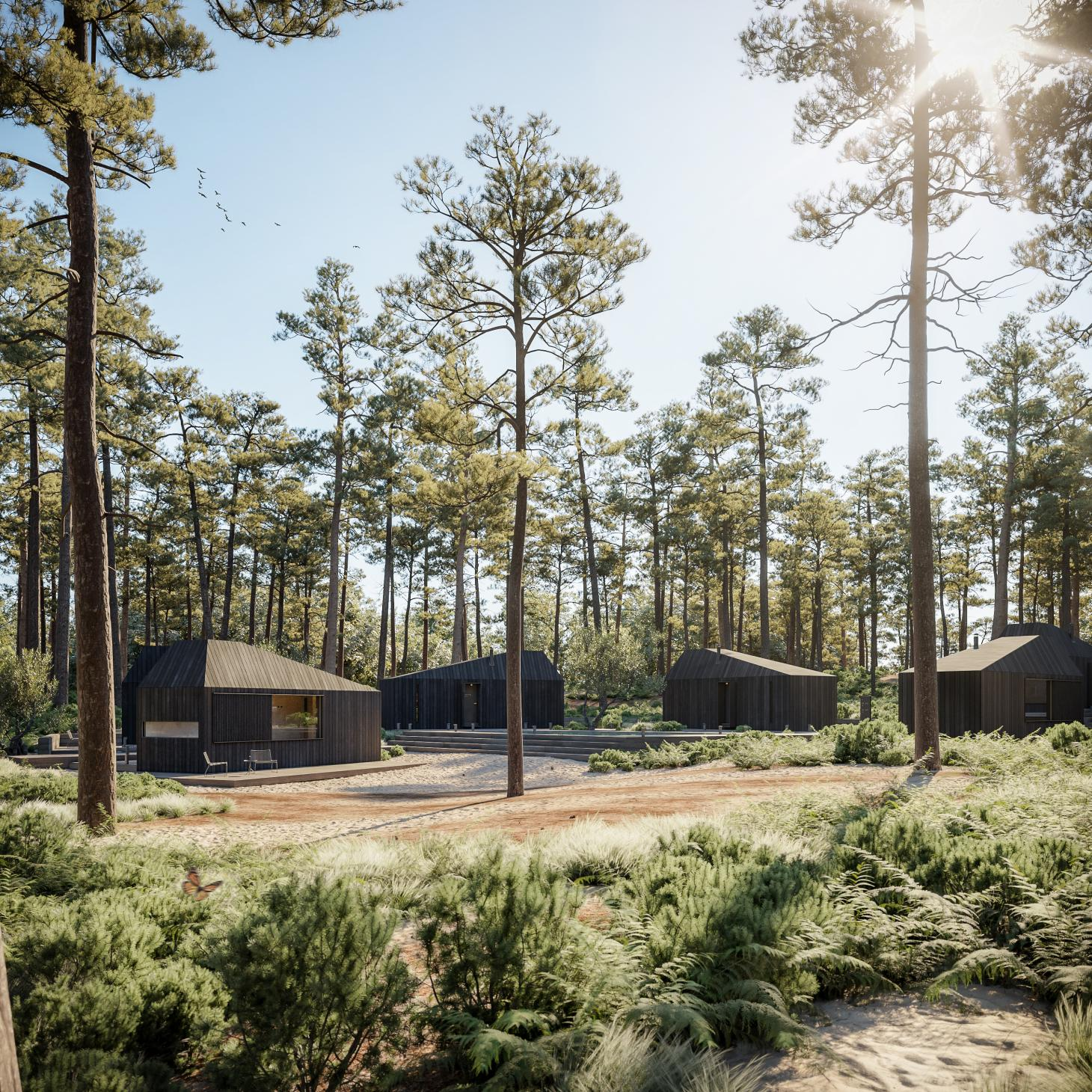 a series of beautiful wooden cabins, Hytte is a special project in the woods