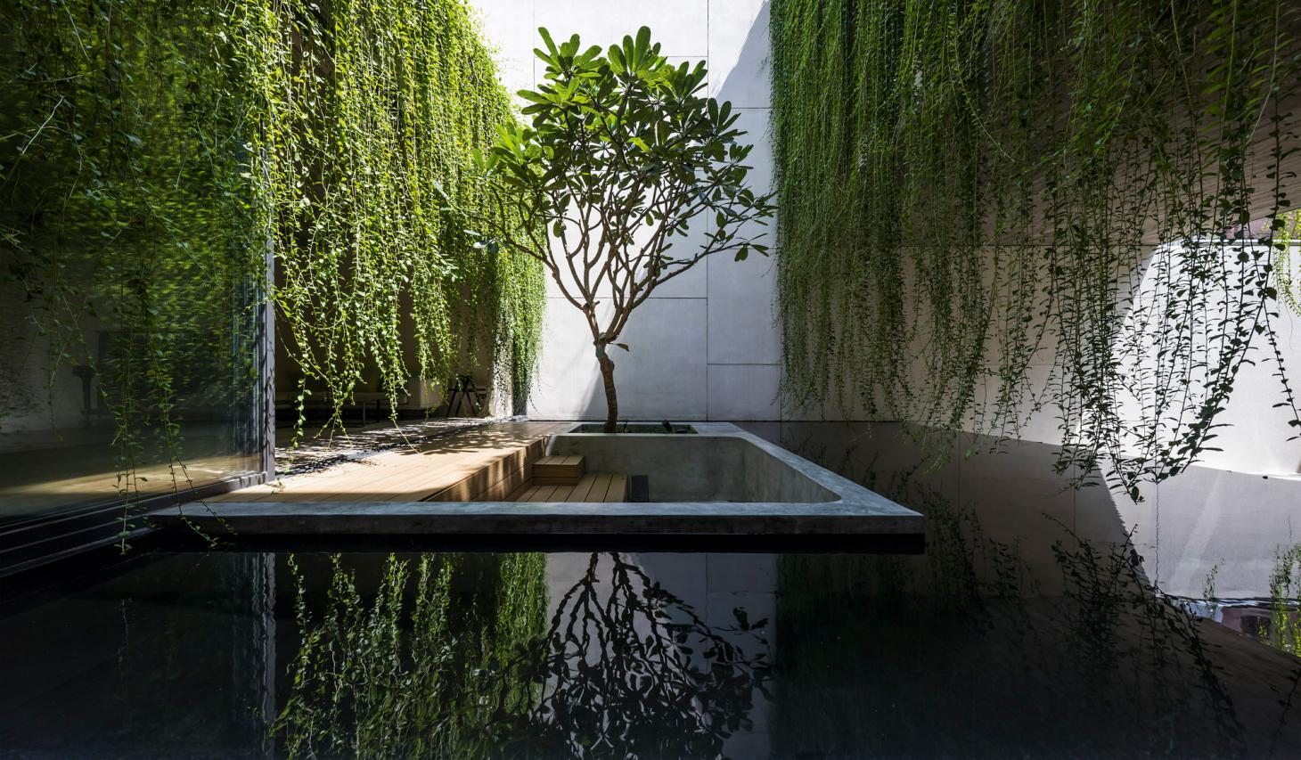 green courtyards with plants and water in Ho Chi Minh city house
