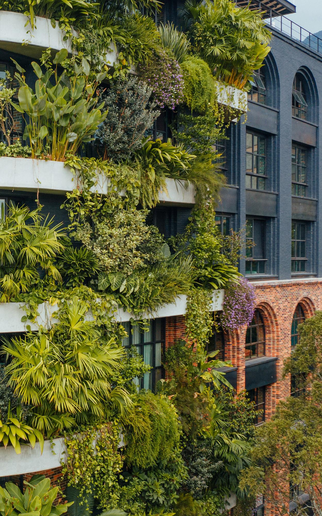 vertical gardens and tropical modernism in Medellin