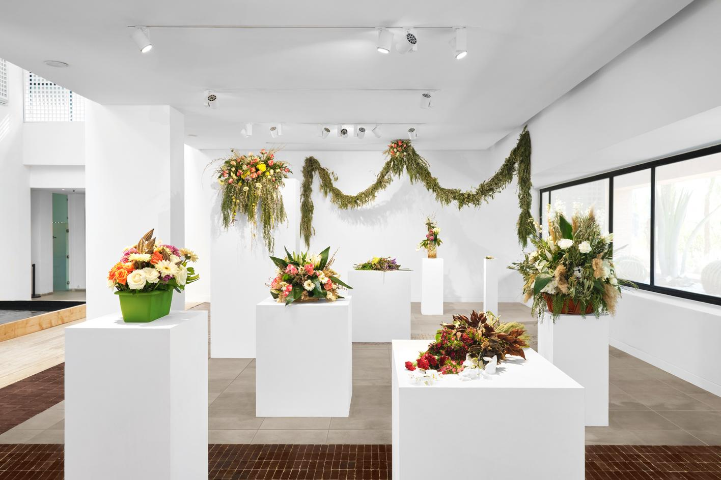 Installation view of Have you seen a horizon lately