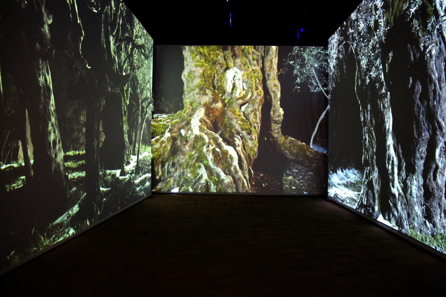 Hala Wardé, A Roof for Silence at the Lebanese Pavilion features projections