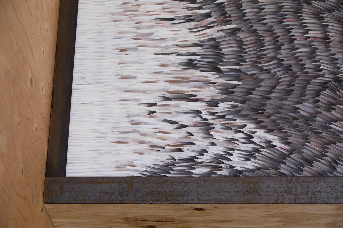 Kate MccGwire immerses Victorian dovecote with feathers