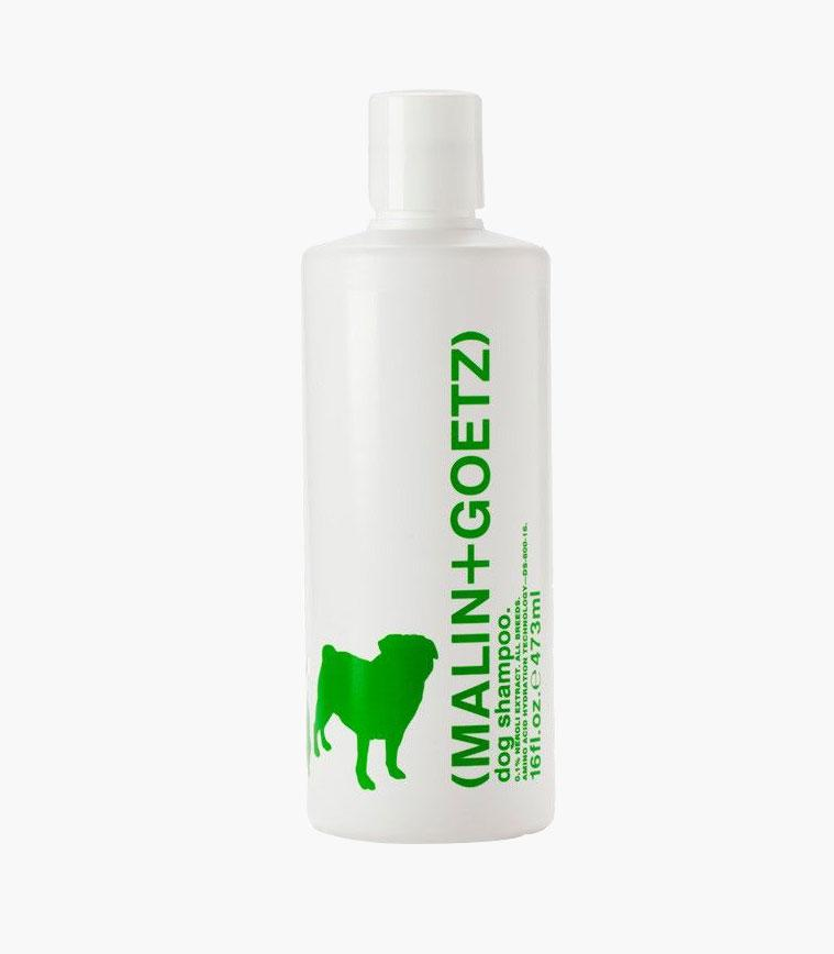 Malin + Goetz dog shampoo in white bottle with green writing against grey background