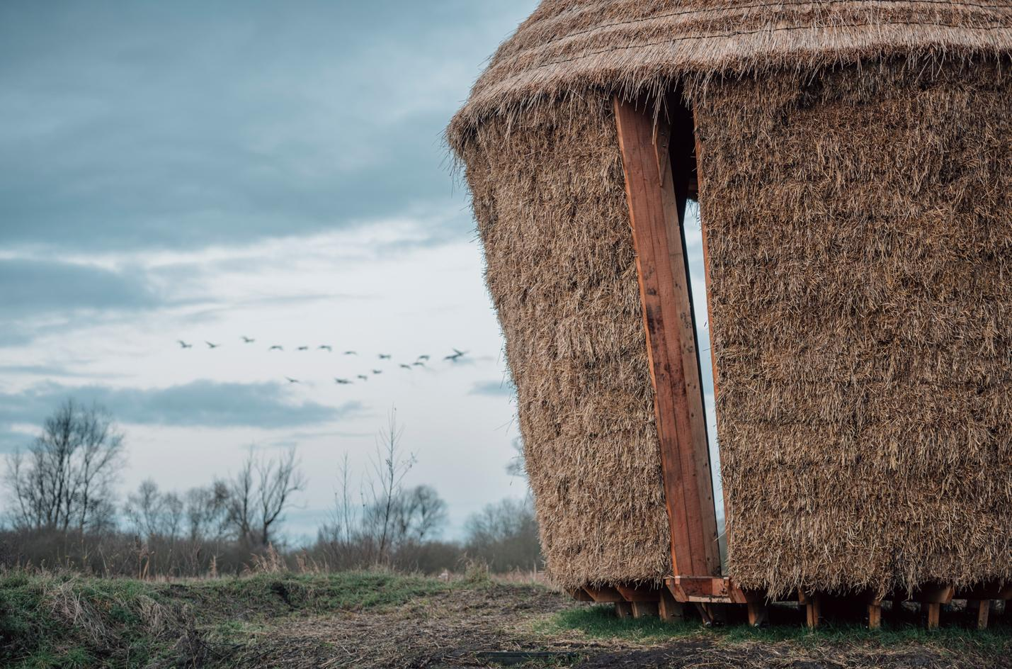 'Mother...' by Studio Morison, a sculpture in the Wicken Fen nature reserve