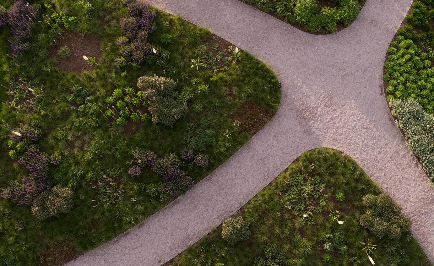 An aerial view of Piet Oudolf's plant curation for the Vitra Garden, shown among the campus' paths