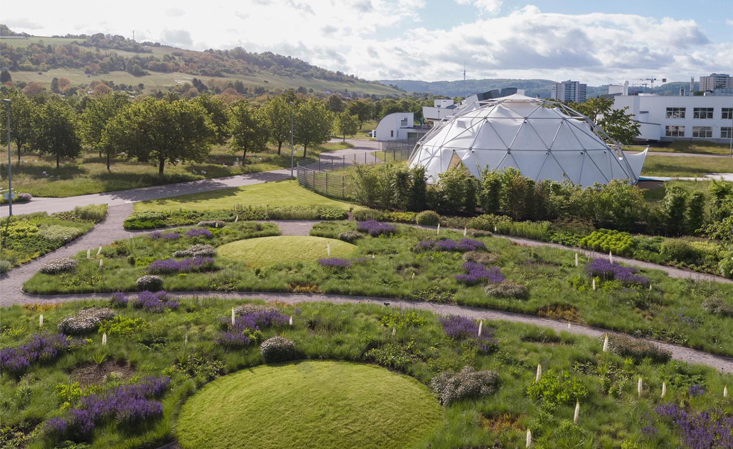 The countryside near Weil am Rhein, Germany, where the Vitra Campus is located. Visible is a dome by Buckminster Fuller among greenery and purple flowers, part of Piet Oudolf's garden design