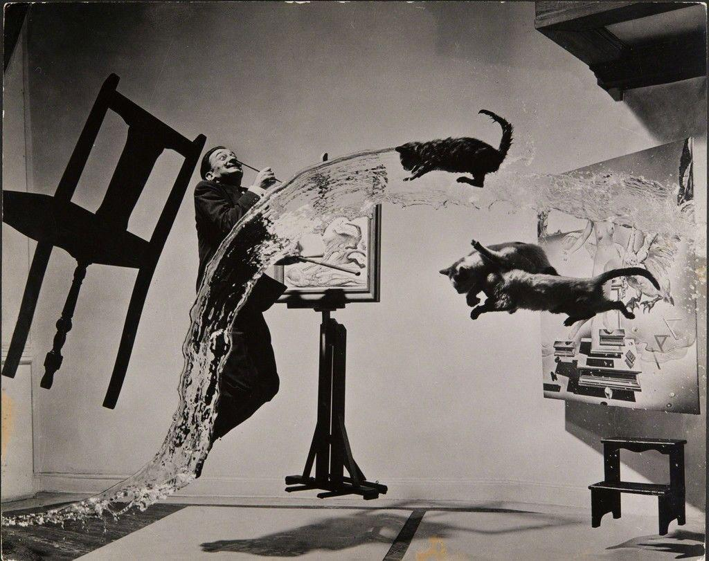 Salvador Dali jumping amid flying cats and a splash of water