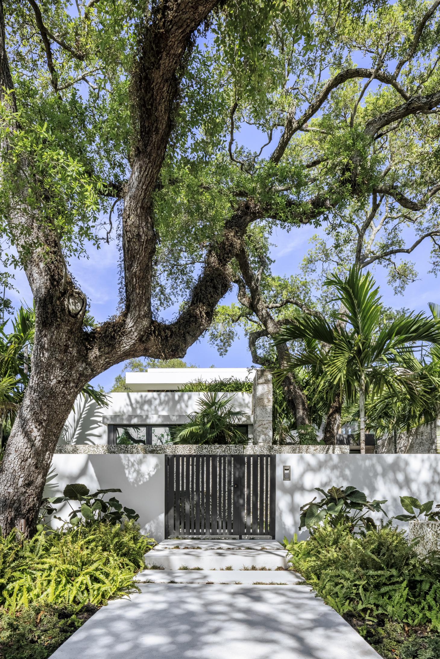 main entrance surrounded by foliage at the Tarpon Bend Residence