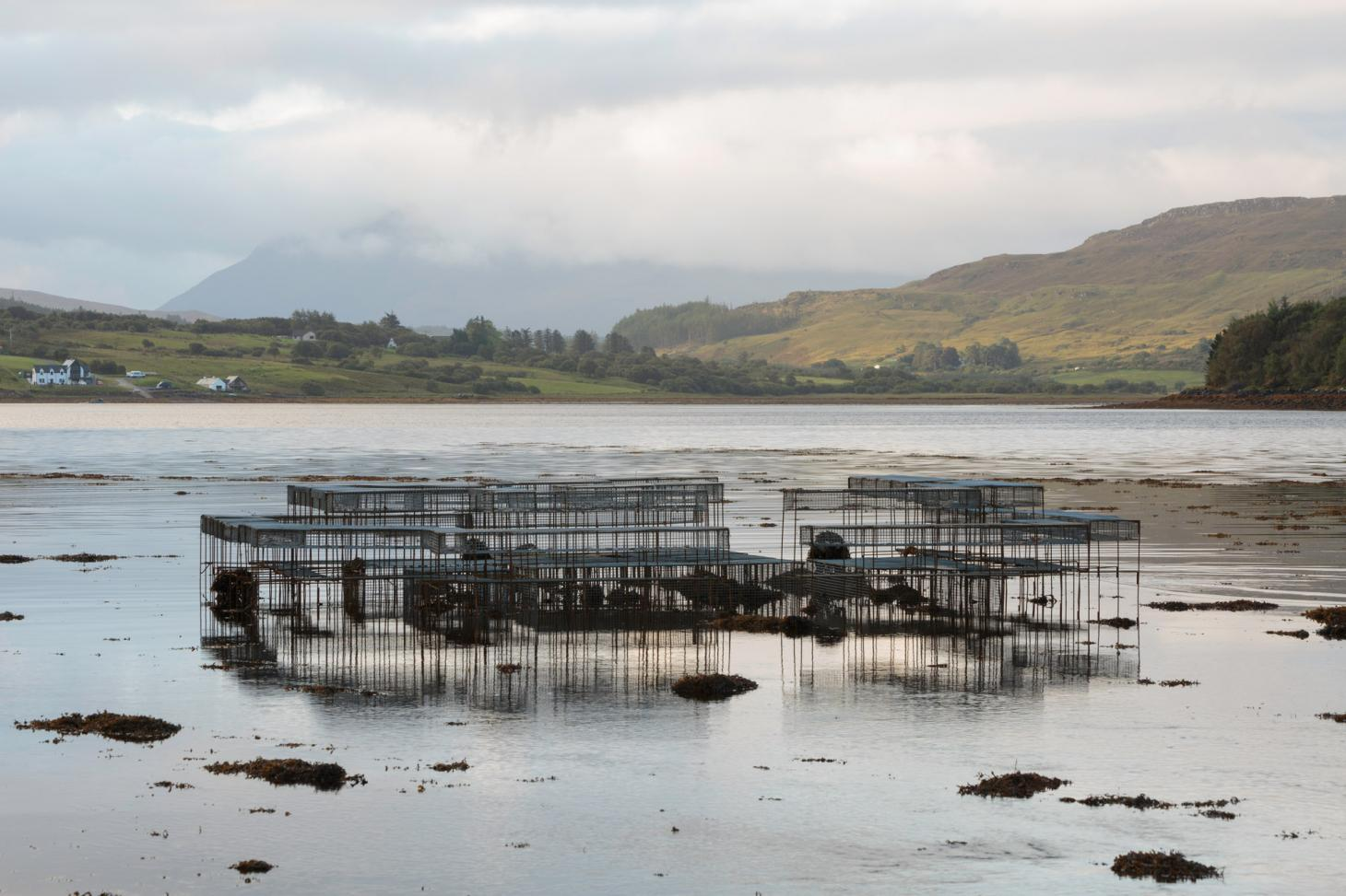 On Tidal Zones' highlights the effects of intensive salmon aquaculture on the Isle of Skye with an installation that works as an underwater oyster table at high tide and a dining table for humans at low tide by Cooking Sections