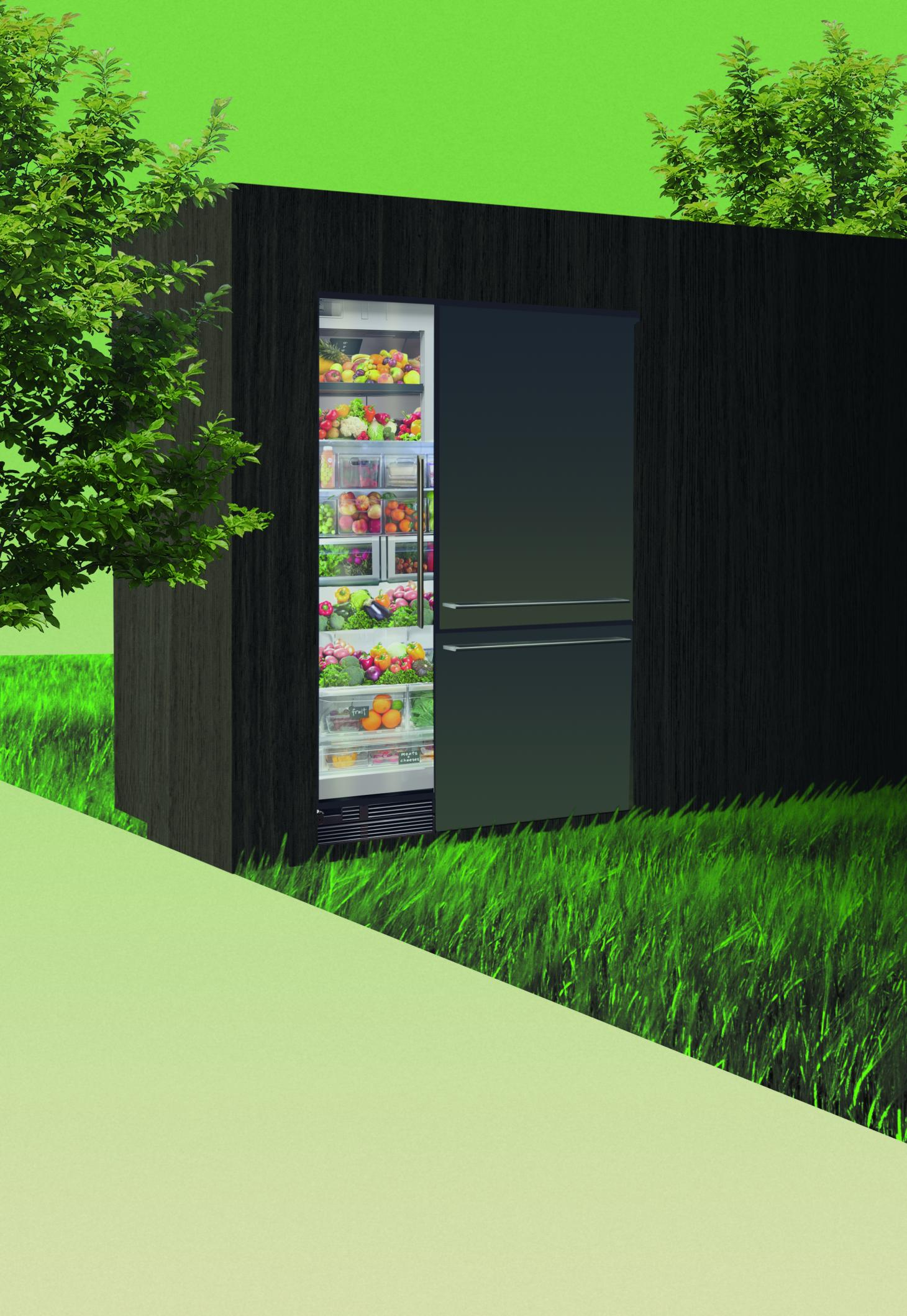Illustration of The Fresh-Food Solution Kitchen, by Gaggenau