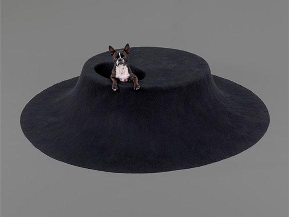 Black round doghouse designed by architect asif khan