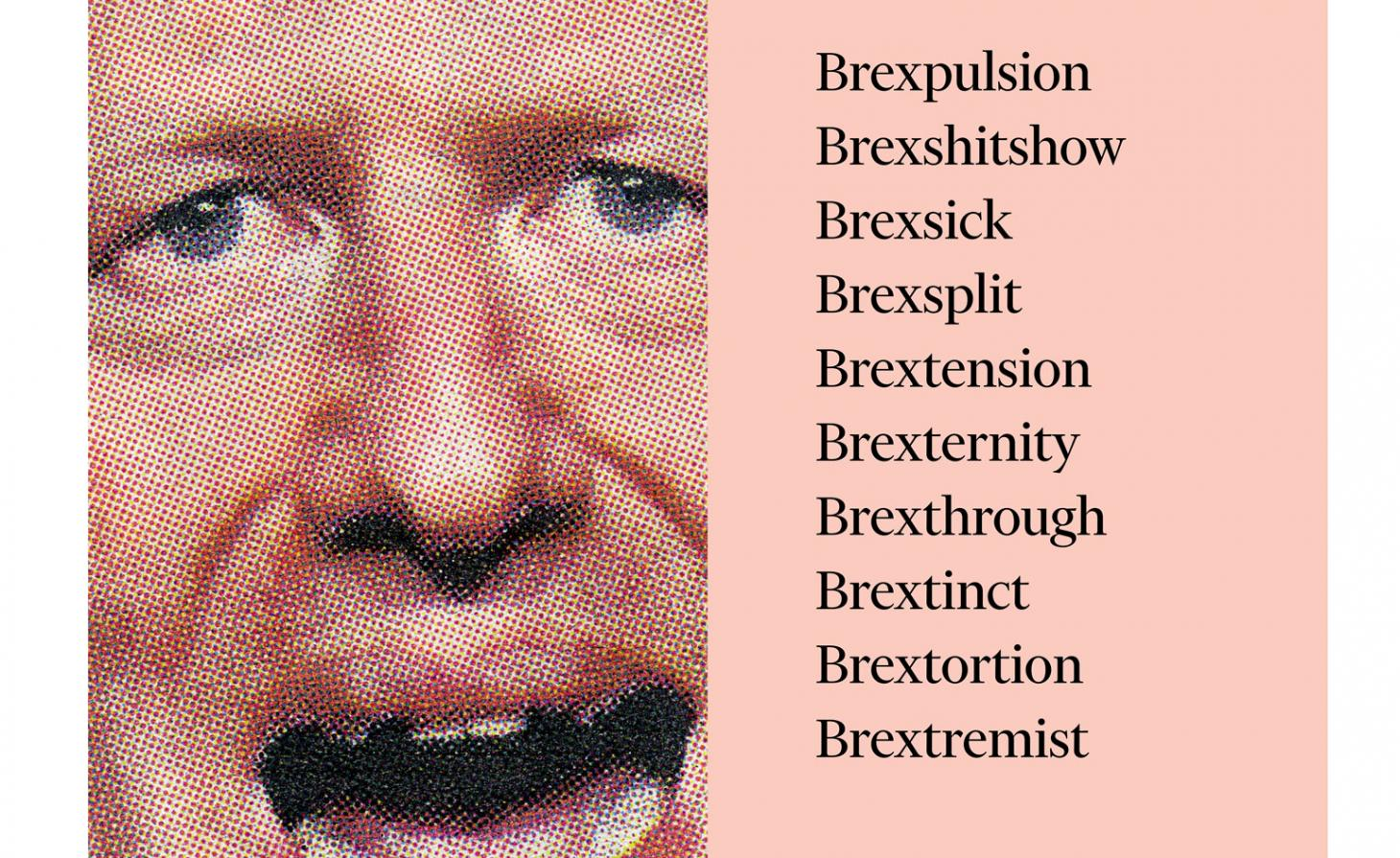 Pixellated picture of Boris Johnson next to plays on the word Brexit