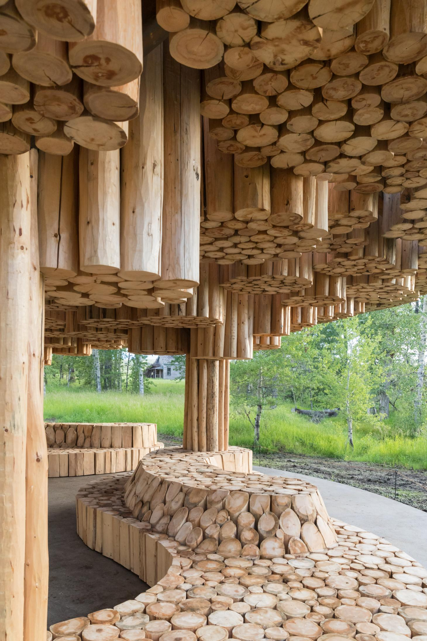 Xylem by Francis Kere at Tippet Rise